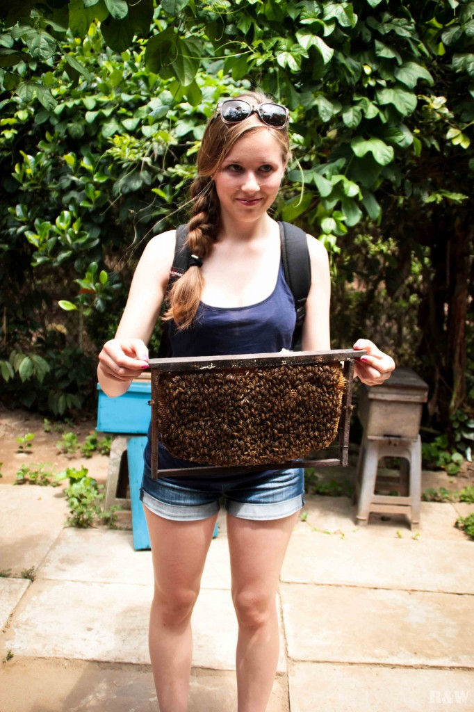 Astrid porte un essaim d'abeilles
