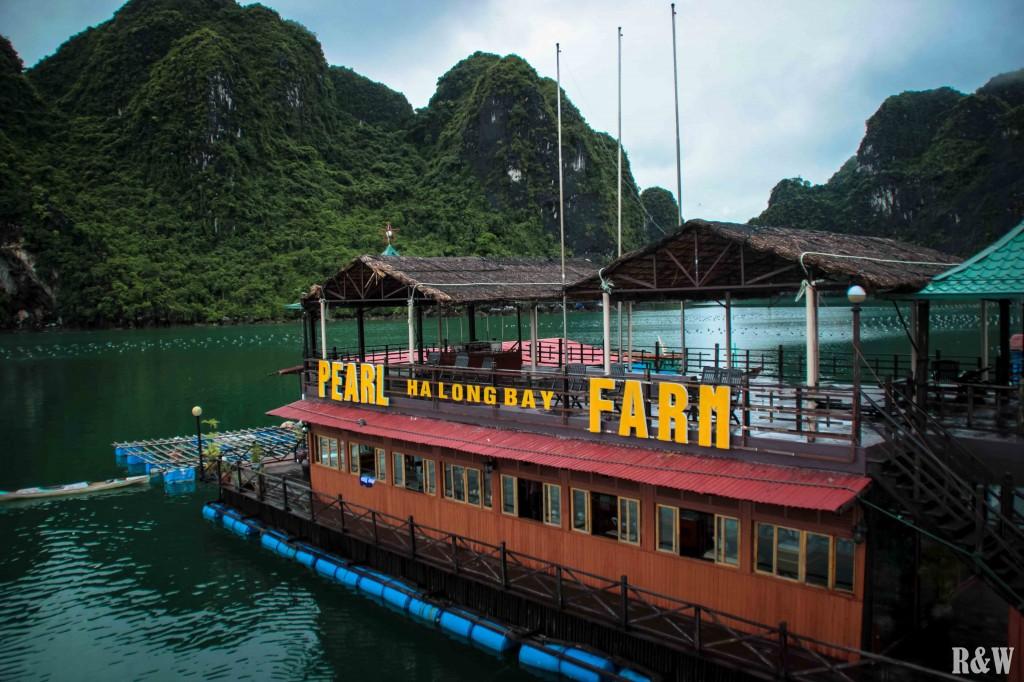 La ferme de perles de culture dans la baie d'Along