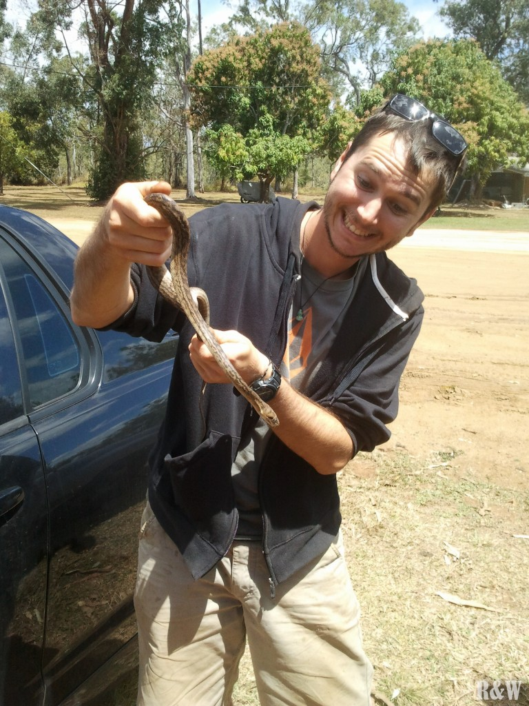 La vie sauvage rencontrée en ferme, un serpent, la phobie de Flo
