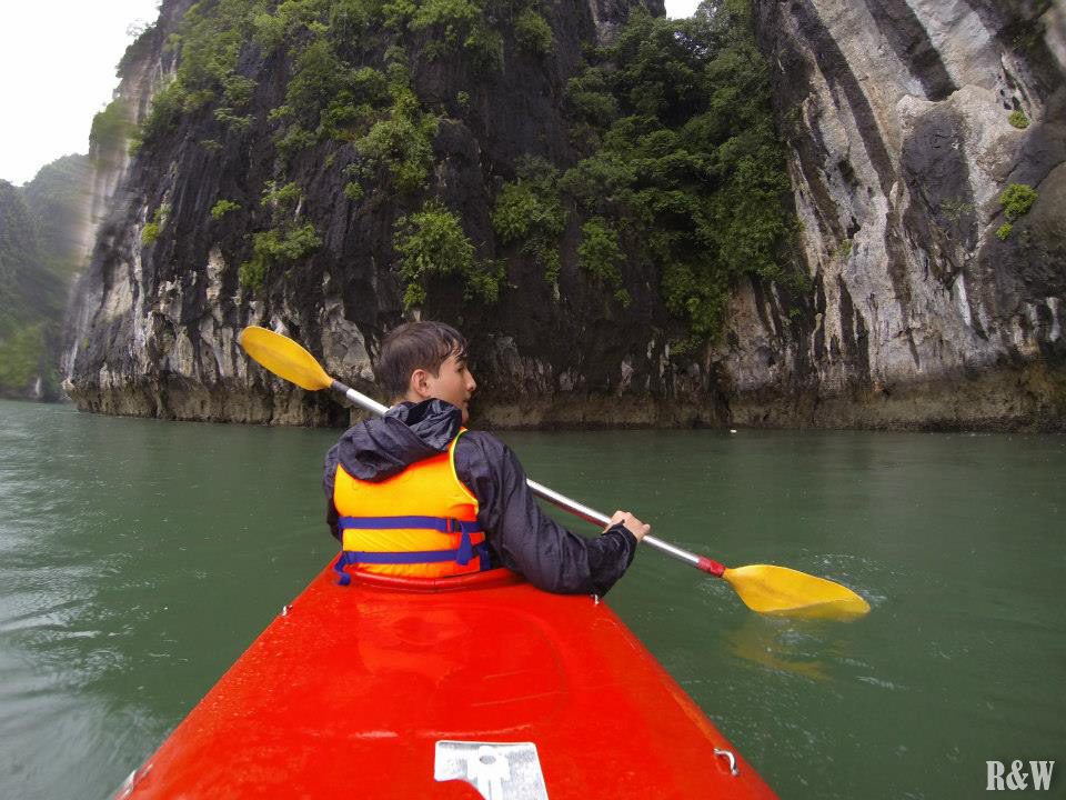 Balade en Kayak dans la baie