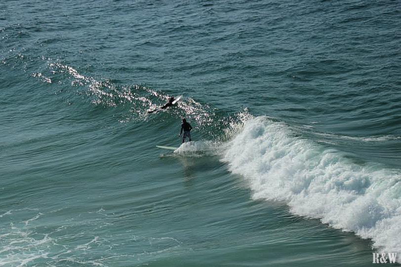 Le Festival Surfers à Byron Bat