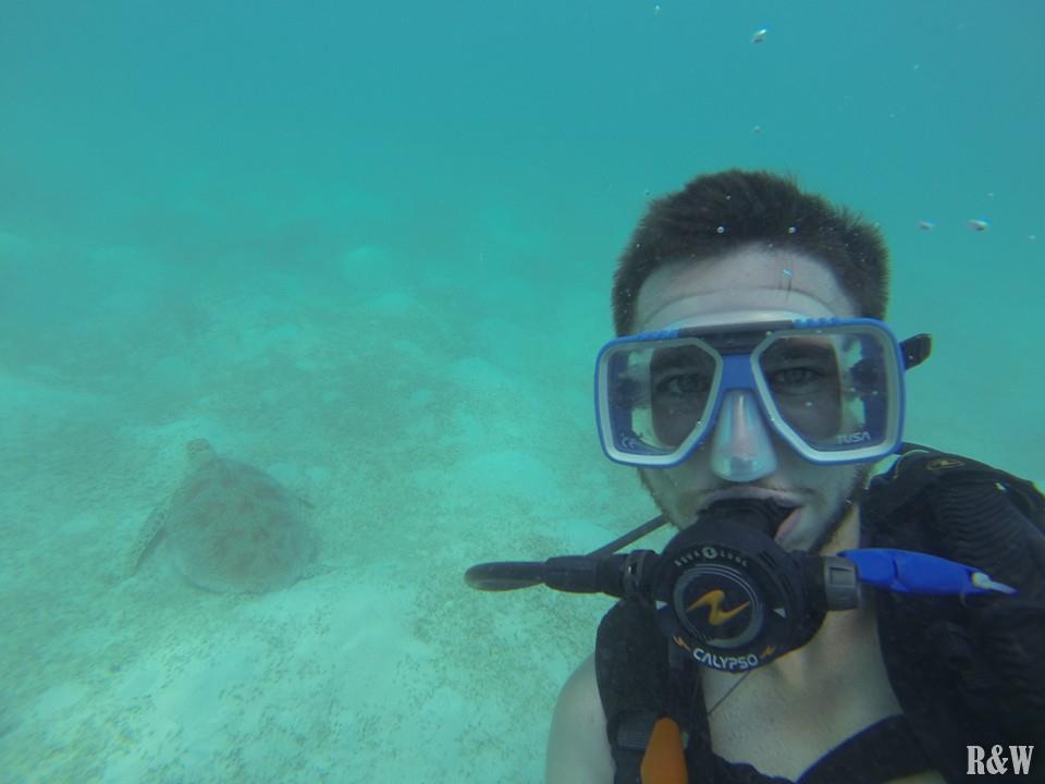 Flo nage avec une tortue de mer