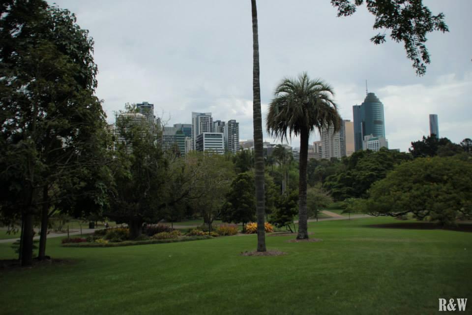 Le jardin botanique de Brisbane