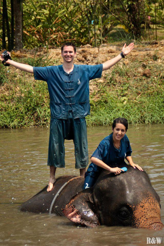 La rencontre avec les éléphants, Chiang Mai, Thaïlande