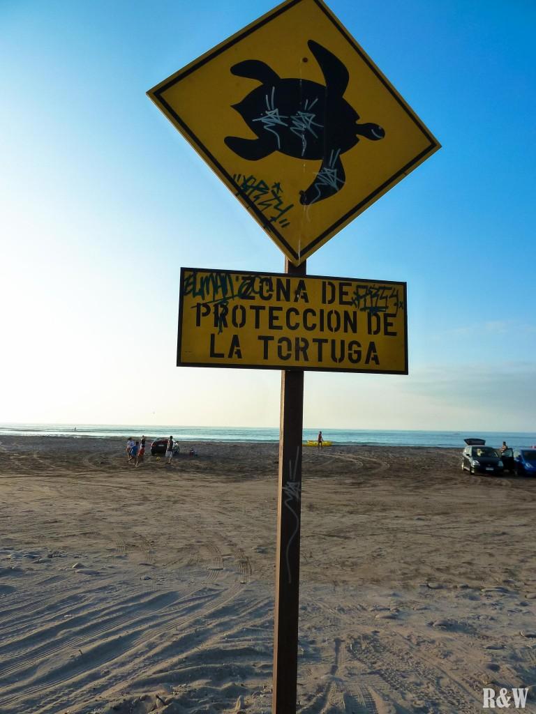 La plage à 15m de l'auberge Arica Unite