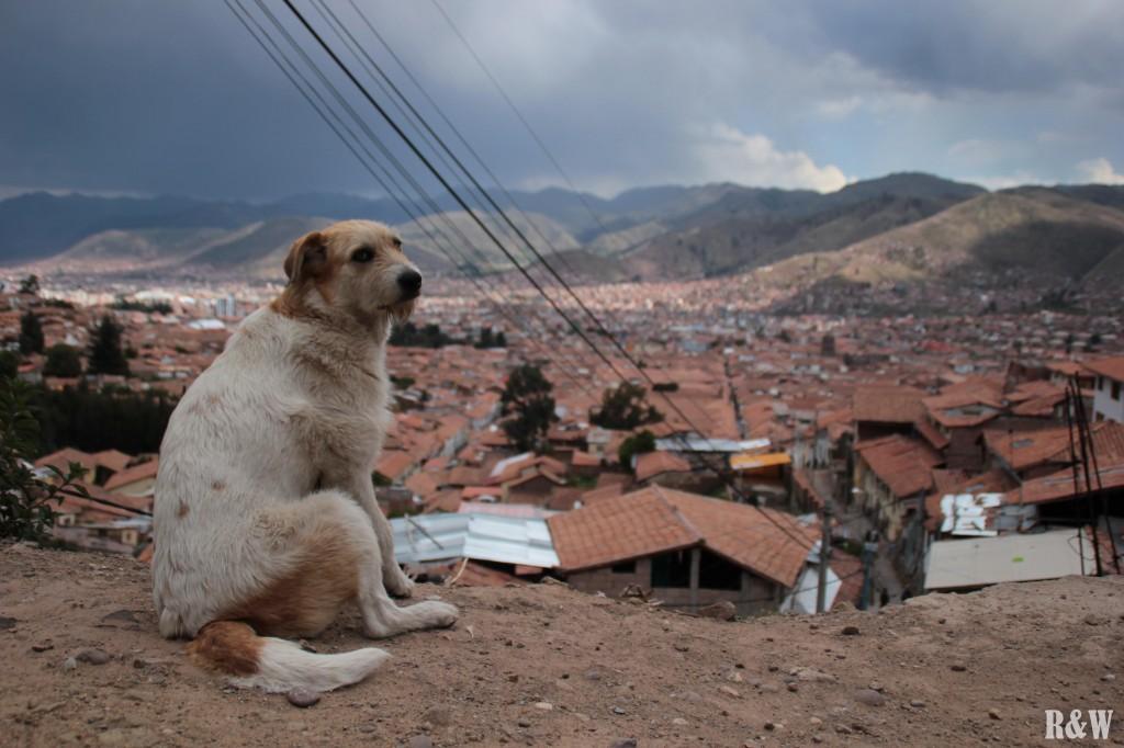 Vue panoramique sur la ville de Cusco
