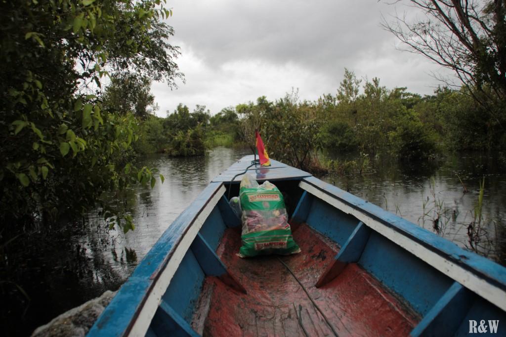 Deux heures de pirogue sur la Rivière du Beni
