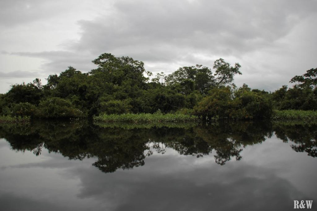 La rivière, 5 à 6 mètres plus haute que la normale