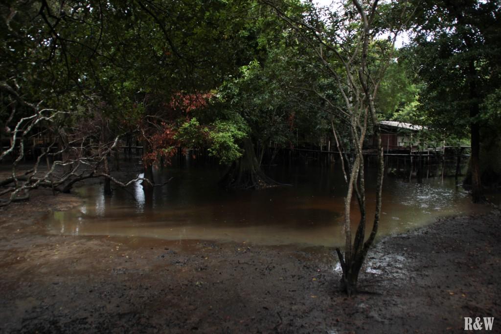 Un camp aux cabanes en bois sur pilotis